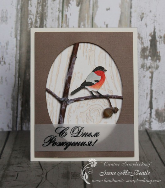 Winter Birthday Card with Bullfinch and Real Wood Branch